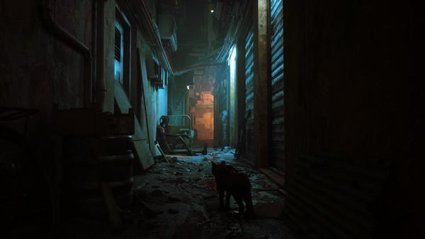 game kucing stray