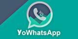 Mengenal Aplikasi YoWhatsApp: Keuntungan dan Risikonya